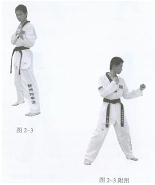 跆拳道的基本技术 日期 2010 5 11 点击 1551085次